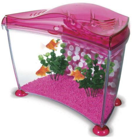 Acquario pesci rossi club del cane for Acquario per pesci rossi
